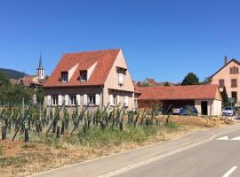 La Clé du Vignoble, villa in Mittelbergheim