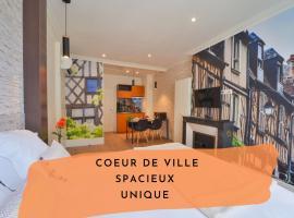 Puits de Jouvence, apartment in Bourges