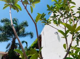 Le Ginestre, apartment in Castellabate