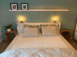 Room with private bathroom in a remodeled house in the center of Gent, homestay in Gent
