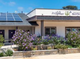 Wildflower Boutique Motel, motel in Point Arena