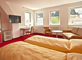 Sternplatz-Hotel, hotel v destinaci Ehingen