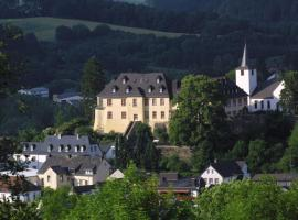 Schloßhotel Kurfürstliches Amtshaus Dauner Burg, hotel in Daun