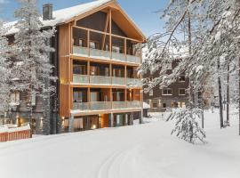 Holiday Home Levi hillside- 2 skipasses included, holiday rental in Sirkka