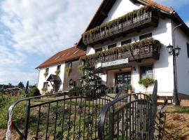 Hotel-Pension Flechsig, Hotel in Hartmannsdorf bei Kirchberg.