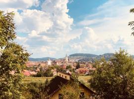 Villa Rustic Transylvania, hotel in Mediaş