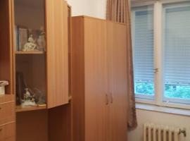 Apartament herculane, apartment in Băile Herculane