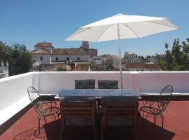 Big and cozy apartment with a big terrace in the center of the old town, apartment in Marbella