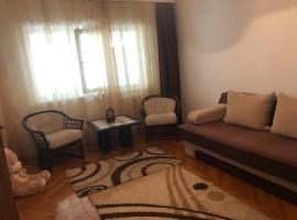 Apartament ultracentral, apartment in Râmnicu Vâlcea