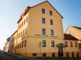 Hotel Pension Treppengasse Nr. 5, Hotel in Altenburg