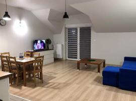 Apartament Hiacynt – obiekty na wynajem sezonowy w mieście Katowice