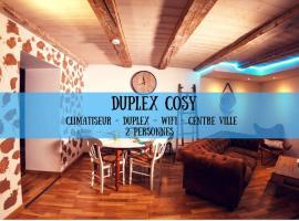 DUPLEX COSY Superdole, apartment in Dole