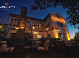 Calina Hotel, отель в Невшехире