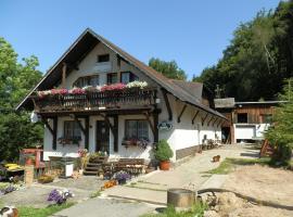 Penzion Selský Dvůr, hotel v destinaci Albrechtice v Jizerských horách