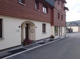 Ferienwohnung Louise, Hotel in Klingenthal