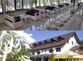 Pensiunea VASY XL, guest house in Băile Herculane