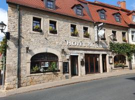 Hotel Zur Traube, Hotel in Freyburg (Unstrut)