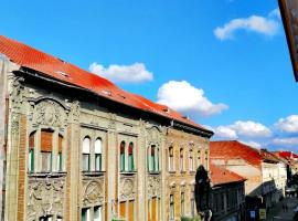 Old City Apartment, apartament din Timișoara