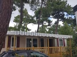 Mobile home Bonne Anse Plage La Palmyre, campground in Les Mathes