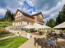 Hotel Eagle, отель в городе Марианске-Лазне