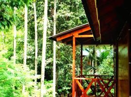 Glendale Plantation Resort Wayanad, self catering accommodation in Vayittiri