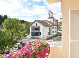 Apartament Stefan, room in Băile Govora