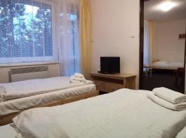 HOTEL SVRATKA, hotel ve Svratce