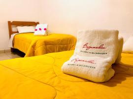 BUGANVILIA, guest house in Paracas