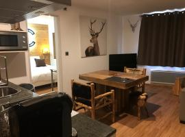 Le Grizzly Luxe Location, apartment in Font-Romeu