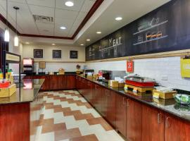 Hampton Inn & Suites Indianapolis-Airport, hotel near Indianapolis International Airport - IND,
