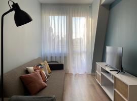 Perfect apartment for 2 in city center, apartment in Chişinău