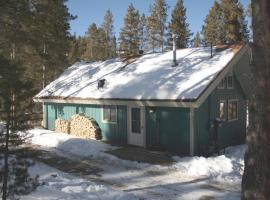 Black Bear Crossing - Pet Friendly - Retro Game Room, villa in Breckenridge
