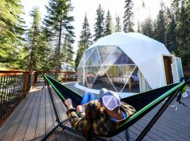 Clear Sky Resorts Glacier - Luxury Sky Domes, hotel v destinaci Pinnacle