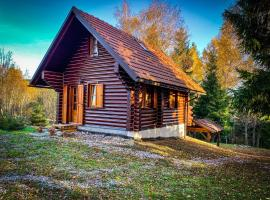 Pine Lodge, cabin in Hlevci