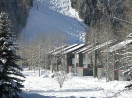 Telluride Lodge by Alpine Lodging Telluride, hotel in Telluride