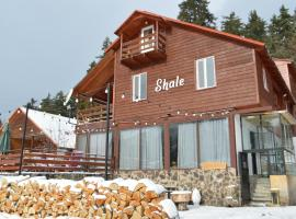 Boutique Hotel Shale, hotel in Bakuriani