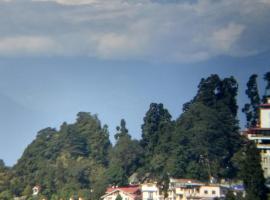Hotel D Sangay, hotel in Darjeeling