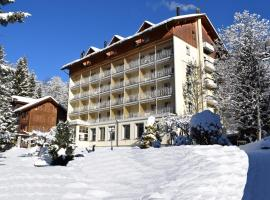 Hotel Wengener Hof, hotel in Wengen