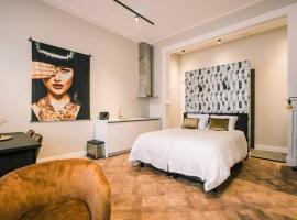 Stadsvilla Tilburg centrum Luxe Studio Alexander, apartment in Tilburg