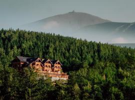 Hotel Seidorf w Sosnówce koło Karpacza, hotel in Sosnówka