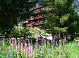 Hotel Alpina, hotel in Zermatt