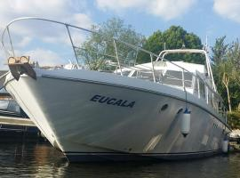 Riverscapes heated classic motor yacht plus hot tub, hotel near Thorpe Park, East Molesey
