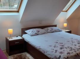 Apartment Erika, family hotel in Fužine