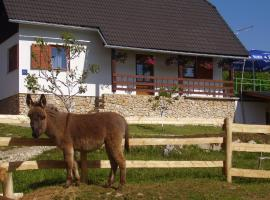 Apartment Goran, holiday home in Poljanak