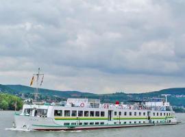 Hotel Plutitor Egreta & Diana, boat in Sfântu Gheorghe