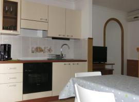 Apartment in Moscenicka Draga 34253, hotel in Mošćenička Draga