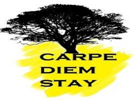 Carpe Diem Stay, family hotel in Kushālnagar