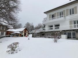 Les Pinsons -Spa sauna GERARDMER - 10 à 12 pers, villa in Gérardmer