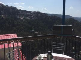 C Shimla Mountain View Hotel,Shimla、シムラーのホテル