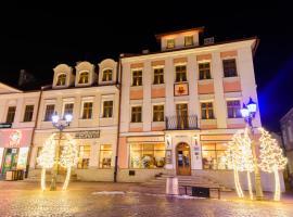 Hotel Ambasadorski Rzeszów, отель в Жешуве